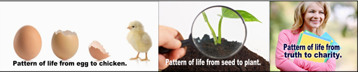 Pattern of life in each Element of the Gospel