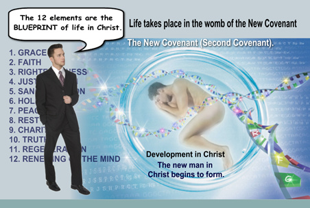 The 12 Elements tell us how Christ is developed in us.