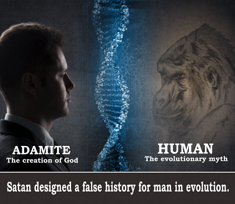 an analysis of creation versus evolution Historical science vs experimental science submitted by josh rosenau on september 24, 2008 - 18:52  a proposal for the creation-evolution controversy,.