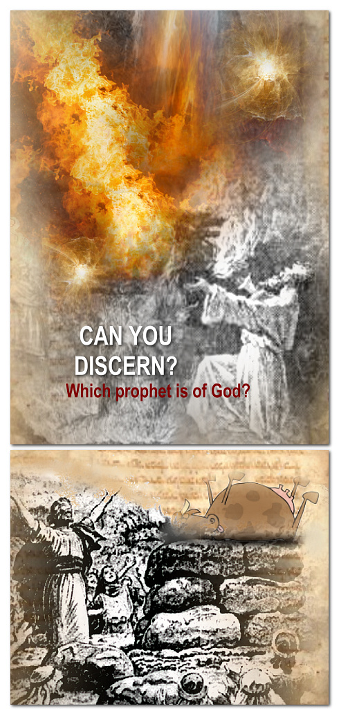 Prophets and How to Discern the True