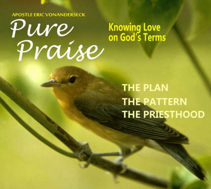 The Plan and Purpose of the Covenant Priesthood