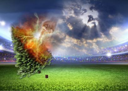 Pine Tree Revelation