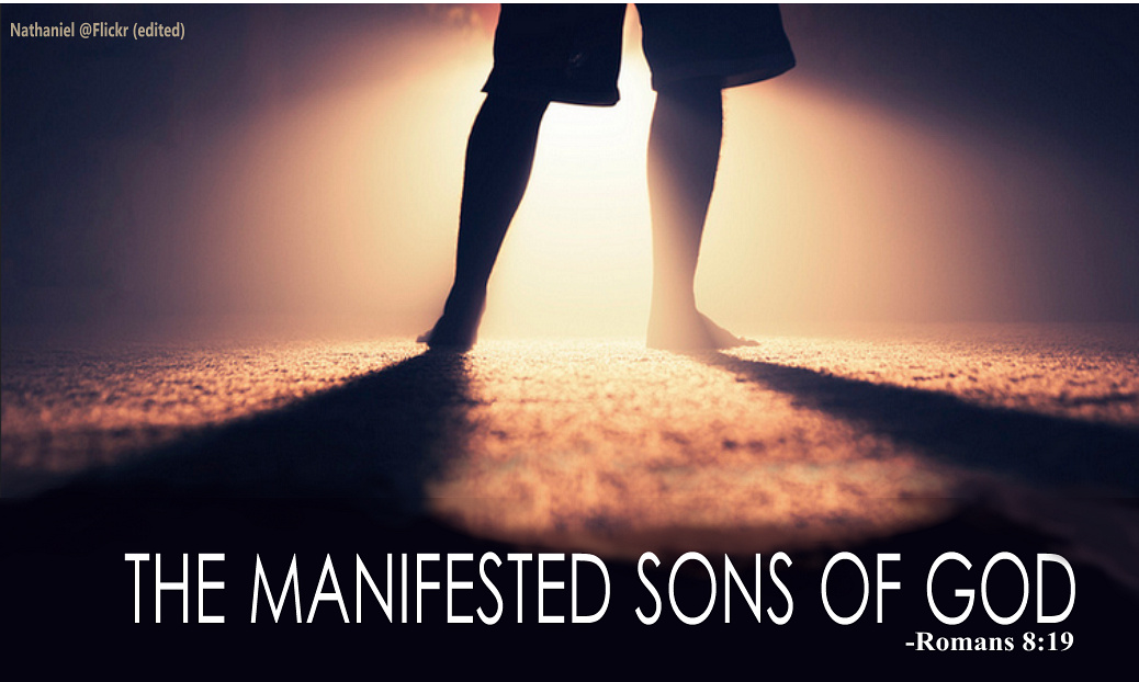 The manifested sons of God.